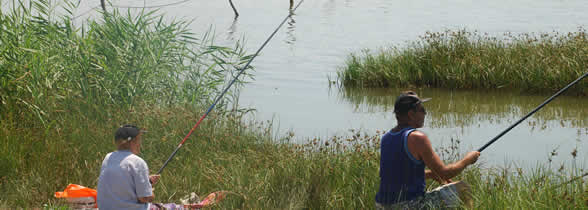 Pescuit Braila - Balta Albina