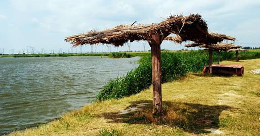 Lac de pescuit in Braila, localitatea Albina
